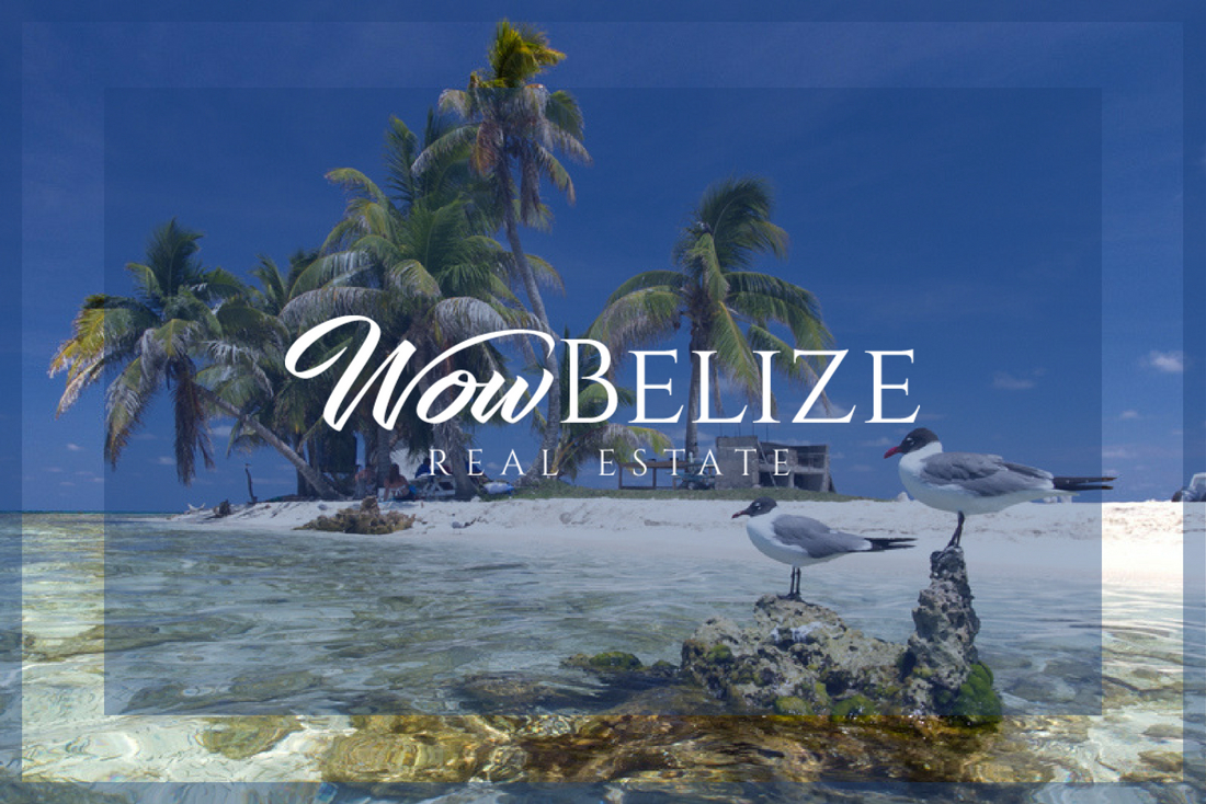 WowBelize